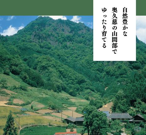 自然豊かな奥久慈の山間部でゆったり育てる